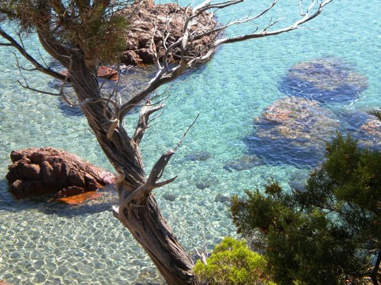 What is Sardinia famous for? The sea
