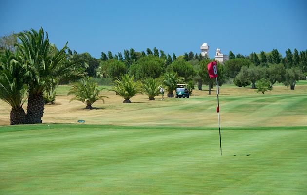 bari-alto-golf-club10.jpg