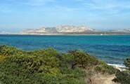 Parc de l'Asinara