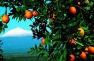 Sicile, Etna