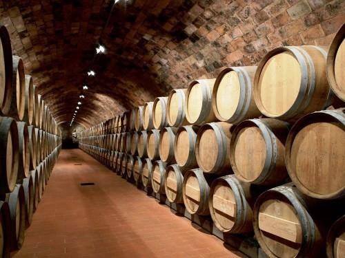 What is Chianti? Chianti cellar