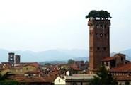 Torre Guinigi, Lucques