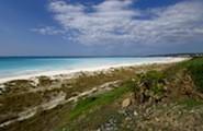 Розиньяно Солвей, белоснежные пляжи