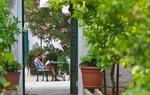 Masseria Il Frantoio
