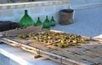 Masseria Fulcignano