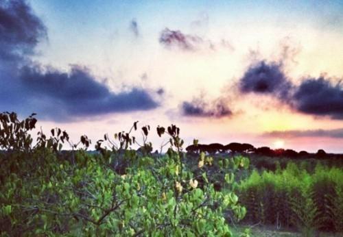 5 Fragen, 5 Antworten, 5 Gründe um die Toskana zu besichtigen!