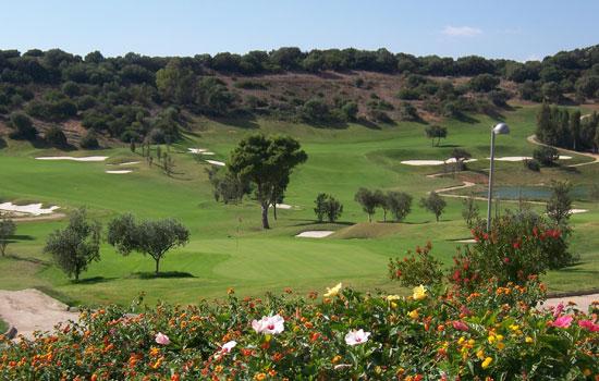 tanka-golf-club3.jpg
