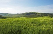 Maremma, Tuscany