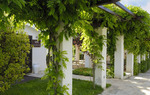 Abate Masseria and Resort