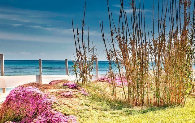 Canne Bianche Lifestyle and Hotel
