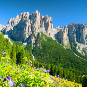 Trentino alto adige luxury hotel holidays in bolzano and for Arredamento trentino alto adige